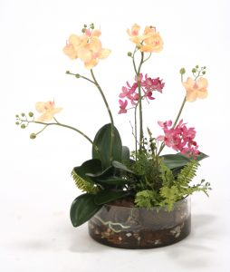 Fuschia Orchid Garden in Waterlook® with Orchid Bark and Rocks (SKU 15022)
