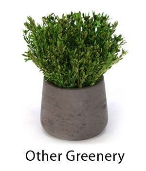 Other Greenery