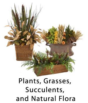 Plants, Grasses, Succulents, and Natural Flora