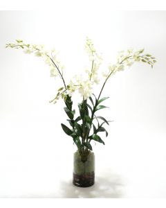 Waterlook® White Dendrobium Orchid Plant with Moss in Glass Cylinder