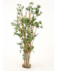 Waterlook® Leafy Bamboo in Tall Rectangular Glass Vase