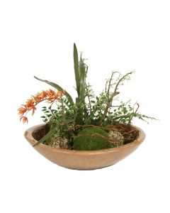 Waterlook® Exotic Garden with Orchids, Moss and Lichen Balls in Bowl