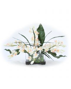 White Cymbidium Orchids with Leaves in Clear Vase