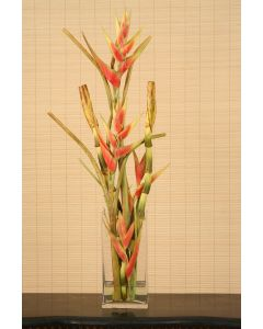 Waterlook® Heliconia, Bird of Paradise Stalks in Tall Glass Vase