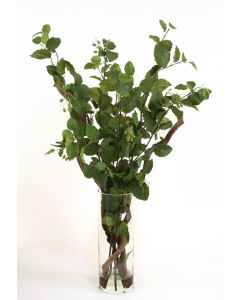 Waterlook® Elm Boughs, Curly Vine in Tall Glass Cylinder