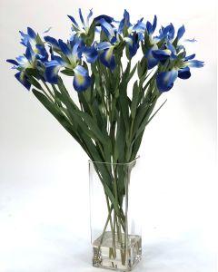 Waterlook® Blue Iris in  Glass Vase