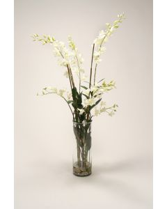 Waterlook® Cream White Dendrobium Orchids with Grass and Bamboo in Glass Cylinder
