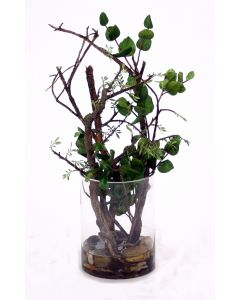 Waterlook&reg Bonsai and Dragon-Wood in Glass Cylinder