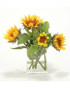 Waterlook® Miniature Sunflowers in Rectangular Glass Vase