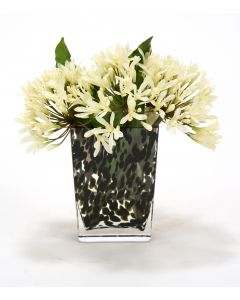 Waterlook® Cream White Agapanthus in Brown Spotted Vase