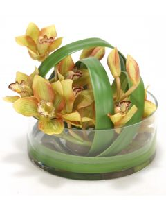 Waterlook&Reg; Green Cymbidium Orchids in Clear Glass Vase