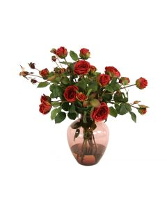 Waterlook® Burgundy Garden Roses in Plumvictoria Vase
