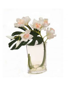 White Cymbidium Orchid in Glass Vase
