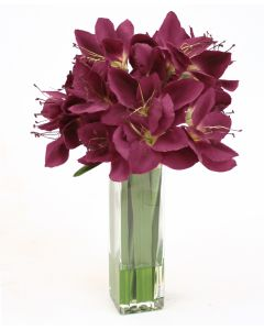 Waterlook® Plum Amaryllis in Tall Square Glass Vase