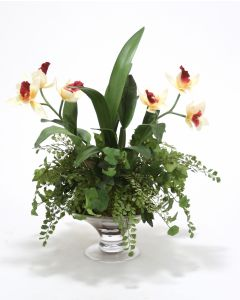 Waterlook® Cattleya Orchid Garden in Round Glass Compote
