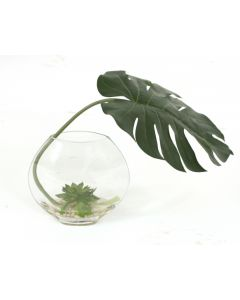 Waterlook® Philodendron Leaf, Green Lotus Pods in Disc Vase