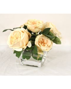 Waterlook® Champagne Roses in Glass Rectangle