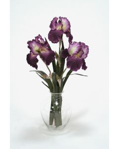Waterlook® Amethyst Bearded Iris with Blades in Victoria Glass Vase