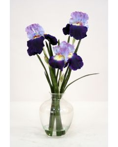 Waterlook&Reg; Purple-Blue Bearded Iris with Blades in Victoria Glass Vase