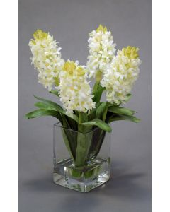 Waterlook&Reg; White Hyacinths in Square