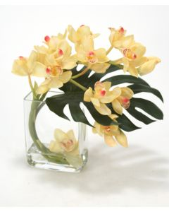 Waterlook® Champagne-Burgundy Cymbidium Orchids with Split Philo Leaf in Curved Rectangular Glass Vase