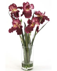 Waterlook® Amethyst Irises with Blades in Glass Cylinder