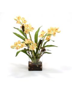 Waterlook® Yellow Orchid Plant with Blades, Natrag in Rectangular Glass Vase