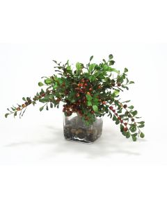 Waterlook® Burgundy Berries with Foliage in Glass Square