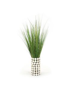 Waterlook® Variegated Light Green Grass in Glass Cylinder with Seashell Jacket