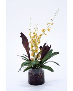 Waterlook® Gold-Green Oncidium Orchid Garden Mix in Clear Cylinder Glass Vase