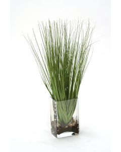 Waterlook® Grass in Rectangular Glass