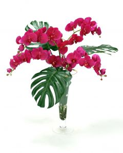 Waterlook® Philo Leaves, Orchid Phaleonopsis in Trumpet Vase with Gold Trim