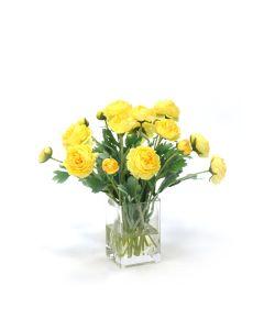 Yellow Ranunculus in Square Vase