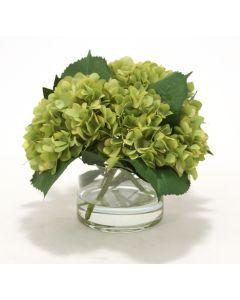 Waterlook® Green Hydrangeas, Laurel Leaves in Glass Cylinder