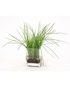 Waterlook® Green Grass with Soil in Rectangular Glass