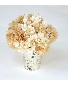 Waterlook® Ivory Hydrangeas in Mercury Glass Vase