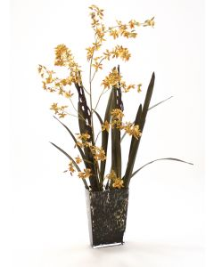 GOLD GREEN ONCIDIUM ORCHID IN LEOPARD SPOTTED GLASS