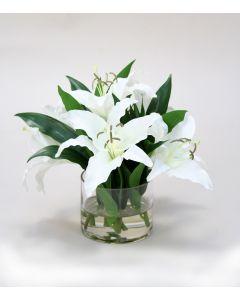 Waterlook® Cream-White Casablanca Lilies in Low Glass Cylinder