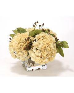 Waterlook® Beige Hydrangeas, Brown Hypercum Berries in Square Glass Vase