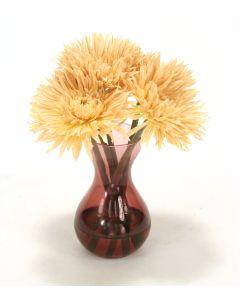 Waterlook® Beige Spider Gerbera Daisies in Plum Glass Vase (Sold in Multiples of 2)