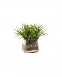 Grass in Glass Square Cube