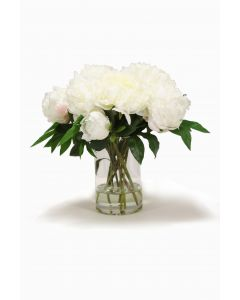 White Peonies in Round Glass Cylinder
