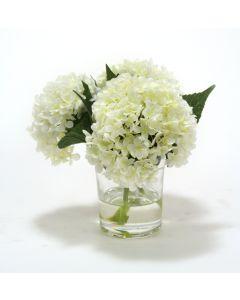 Waterlook® White Hydrangeas in Glass Cylinder