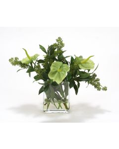 Waterlook® Green Antherium with Green Skimmia Berries in Rectangle Glass Vase