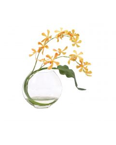 Waterlook® Gold Vanda Orchids with Tropical Leaf in Disk Vase