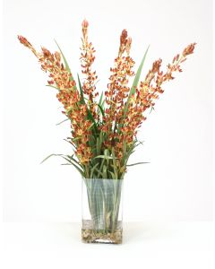 Waterlook® Cream Brown Lupin Spikes with Grasses in Tall Rectangular Glass Vase