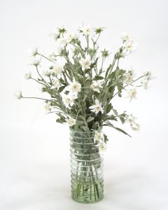Waterlook® White Edelweiss in Green Ribbed Glass Vase
