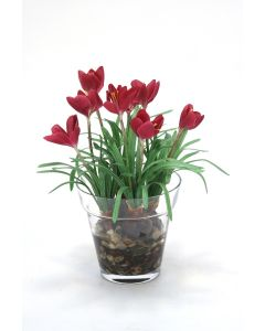 Waterlook® Mauve Crocus in Glass Flower Pot
