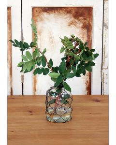 Waterlook® Mountain Ash in Wired Glass Vase