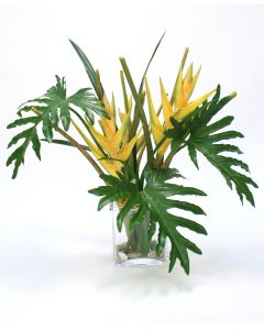 Yellow Heliconia With Philo Leaves and Tropical Blades